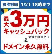 《最大30,000円キャッシュバック》キャッシュバック&ドメイン永久無料キャンペーン